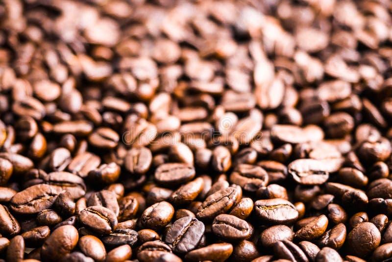 Mörker grillade kaffebönor bakgrund och textur, selektiv focu royaltyfria bilder