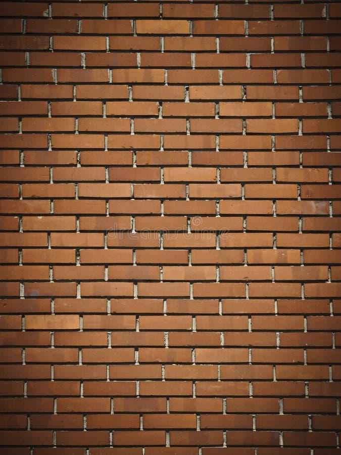 mörkröd vägg för tegelsten royaltyfri foto