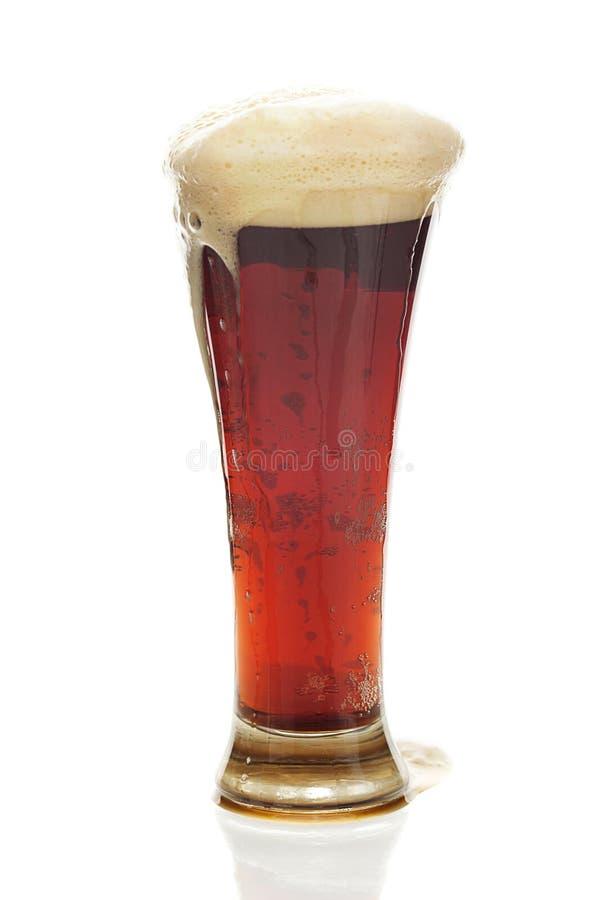 Mörkt öl med skumet i ett högväxt exponeringsglas royaltyfri bild