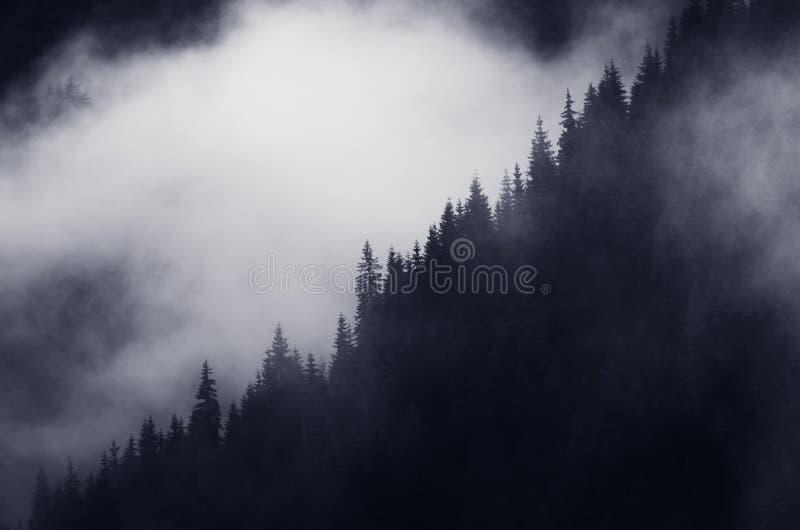 Mörkt berglandskap med miststigning arkivfoton