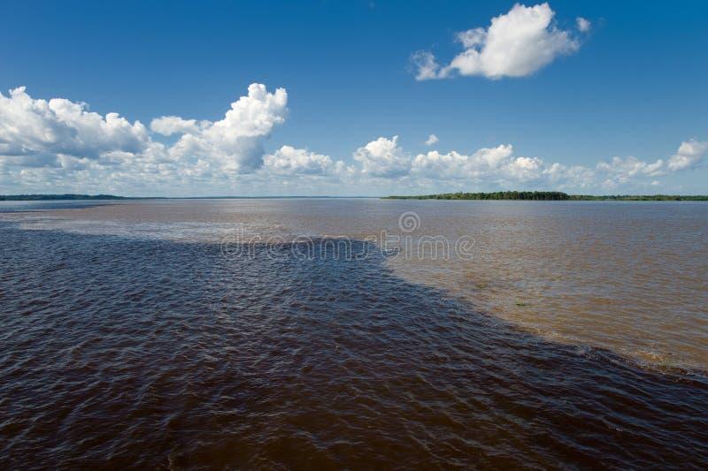Möte av vatten i amasonen i Brasilien arkivfoton