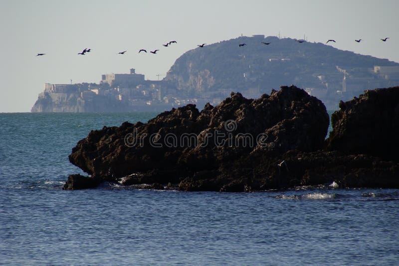 Möven, die auf die Küstenlinie von Gaeta fliegen stockfoto