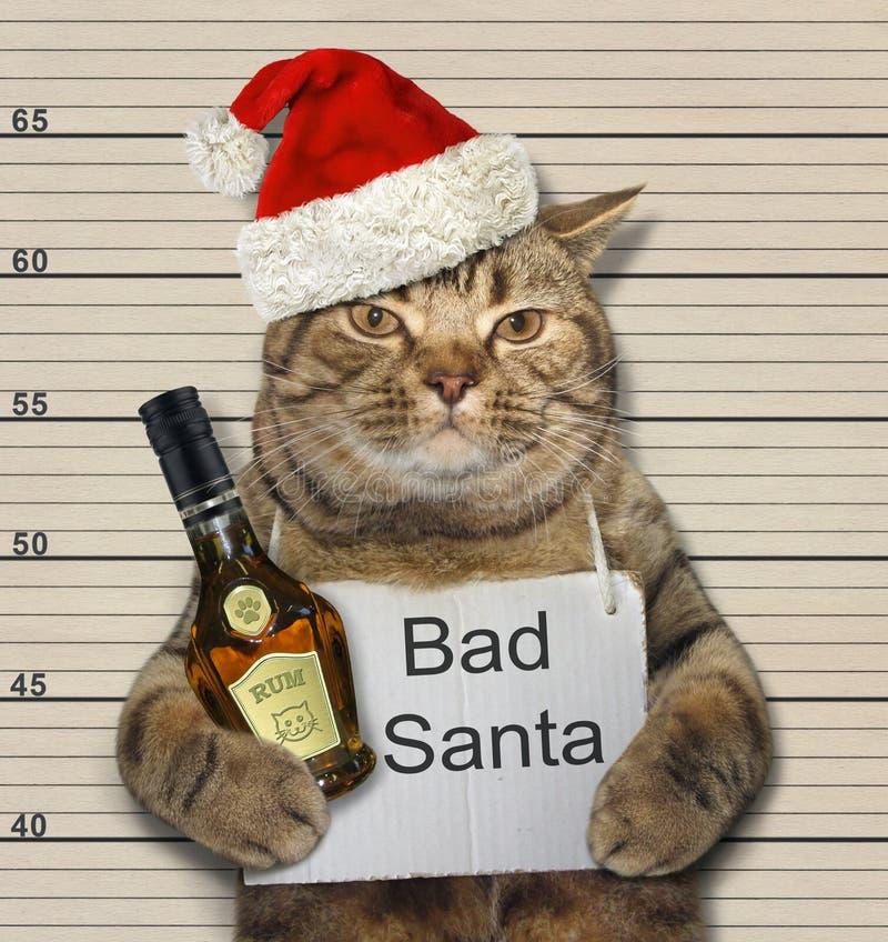 Mún gato con ron en la prisión fotos de archivo libres de regalías