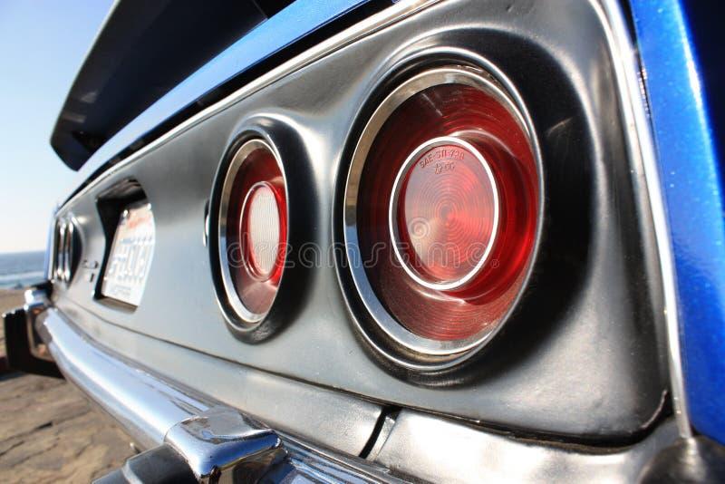 Músculo americano | Barracuda   imagens de stock royalty free