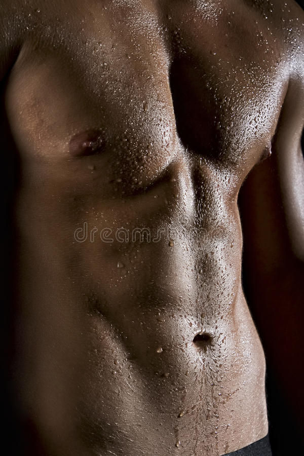 Músculo molhado fotos de stock