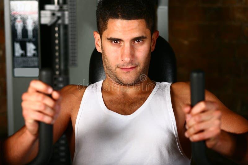 Músculos da caixa do treinamento do Bodybuilder fotos de stock