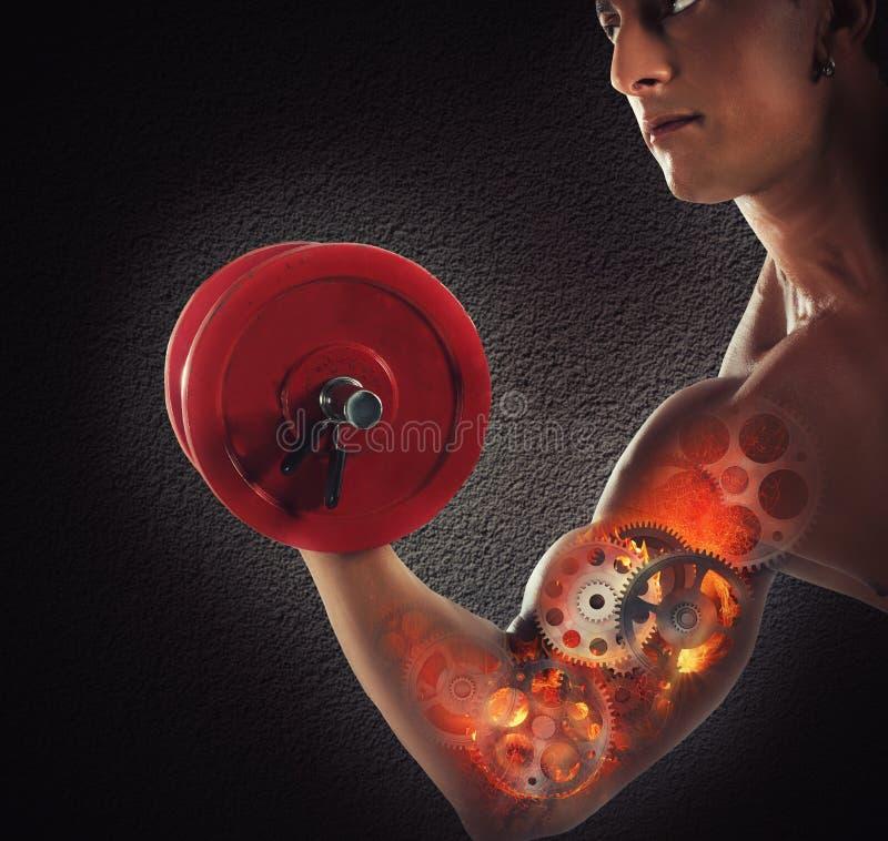 Músculos da engrenagem fotografia de stock