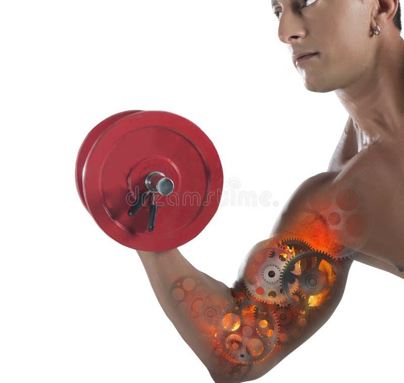 Músculos da engrenagem foto de stock royalty free