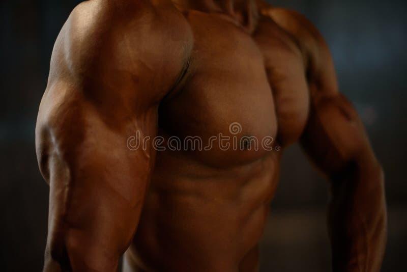 Músculos del primer de la presentación modelo del hombre afroamericano con el torso desnudo en el fondo negro del estudio imágenes de archivo libres de regalías
