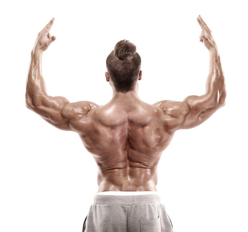 Músculos traseiros de levantamento modelo da aptidão atlética forte do homem, tríceps, imagens de stock