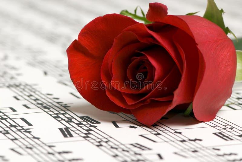 Música 2 de Rosa imagens de stock