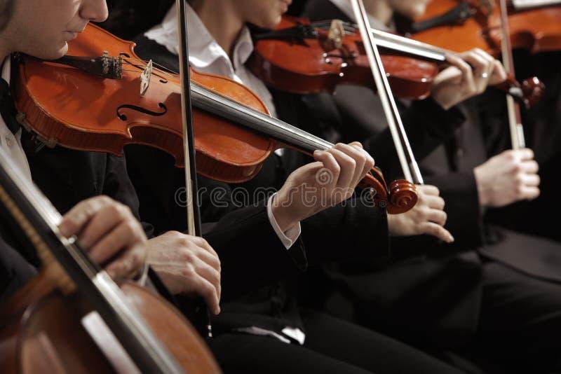 Música clássica. Violinistas no concerto imagem de stock royalty free