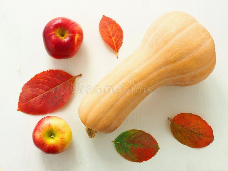 Música da noite Abóbora madura com folhas e maçãs de outono em cima do fundo de madeira velho fotografia de stock