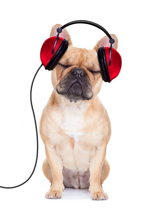Música del perro imagen de archivo libre de regalías
