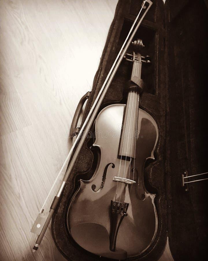 música del violín foto de archivo