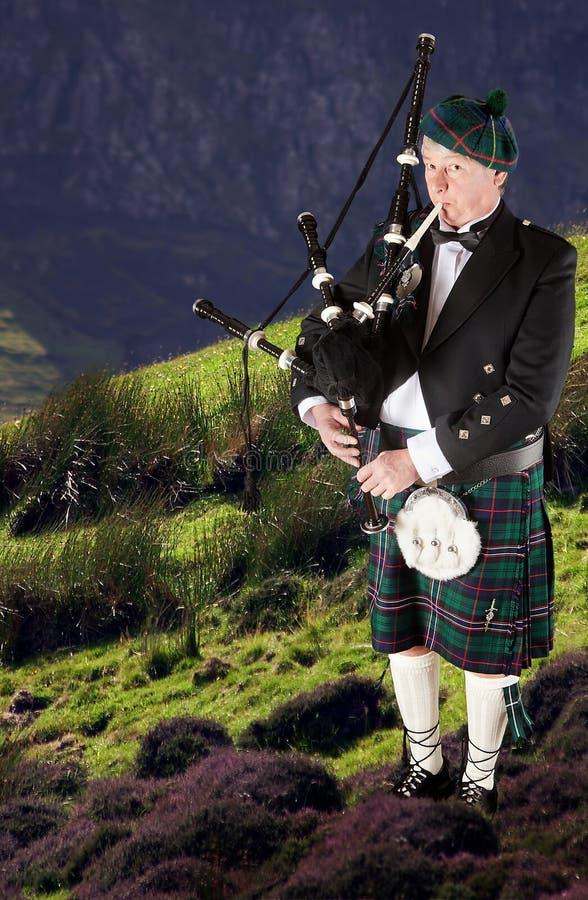 Música do escocês fotos de stock royalty free