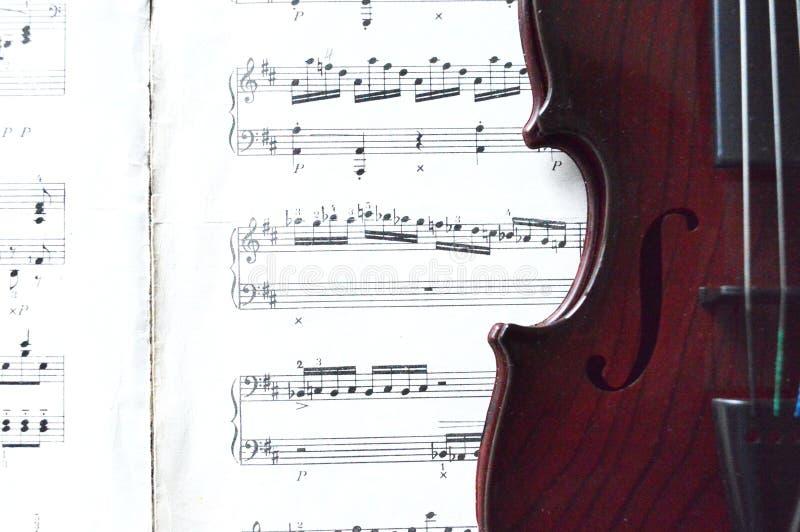 Música do violino e de folha imagem de stock