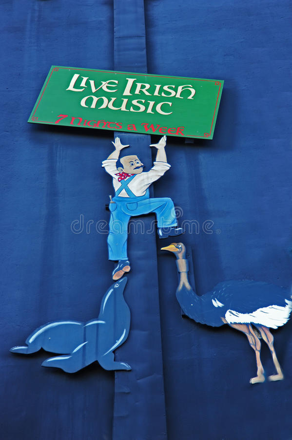 Música irlandesa viva imagem de stock royalty free