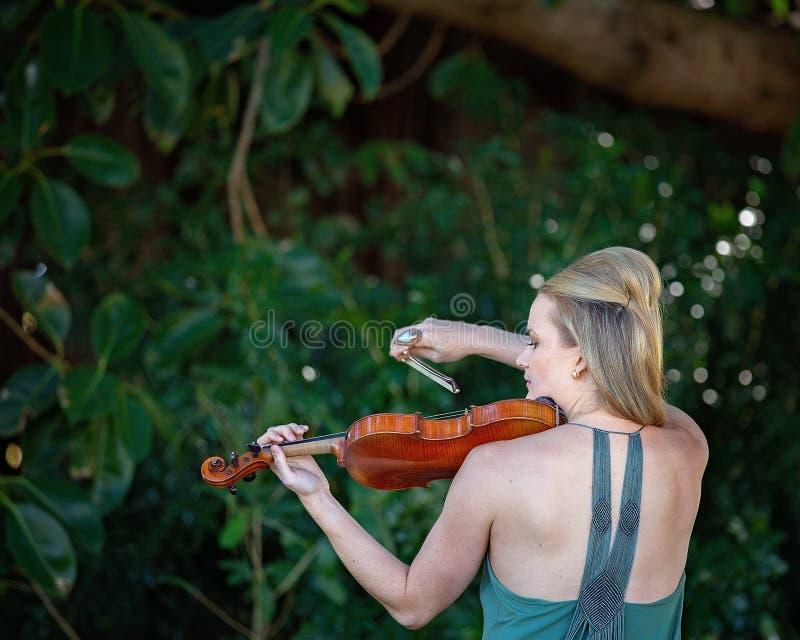 Músico atrativo Playing Antique Violin em uma floresta imagens de stock