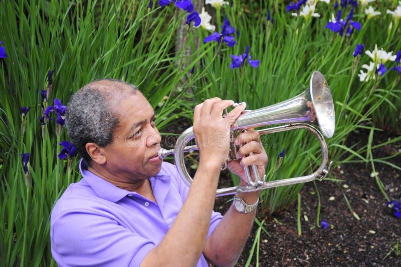Músico de jazz fotos de stock