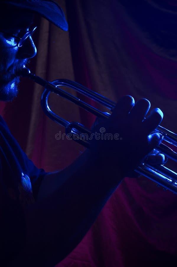 Músico de los azules   imagen de archivo