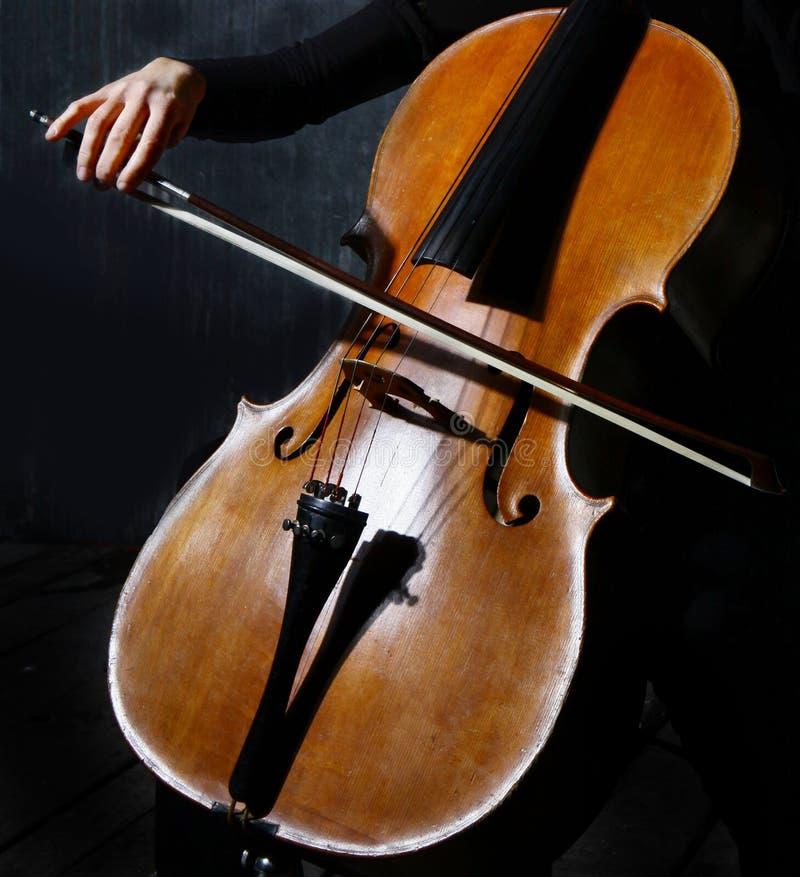 Músico do violoncelo imagens de stock