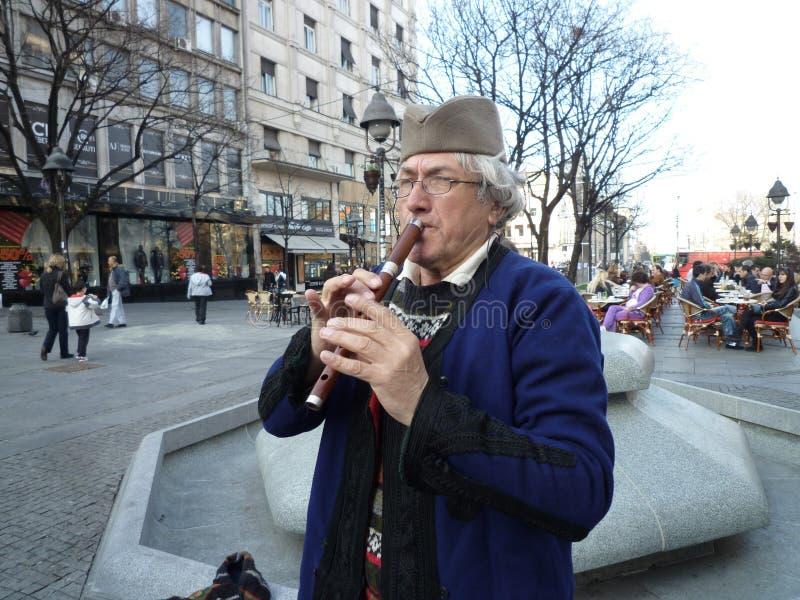 Músico popular sérvio foto de stock