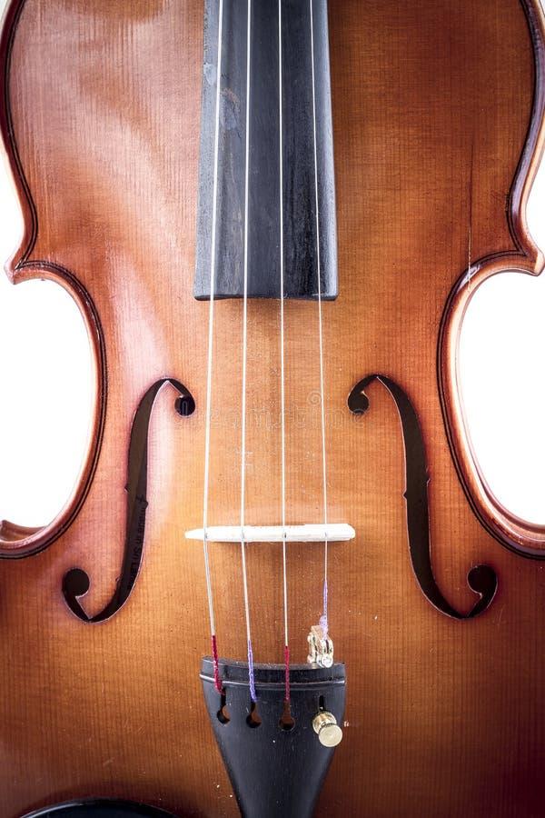 Músico, vista delantera del violín aislado en el blanco, vintage imágenes de archivo libres de regalías