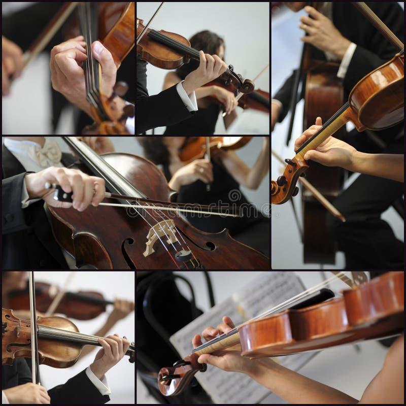 Músicos del detalle del violín para jugar una sinfonía imagen de archivo libre de regalías