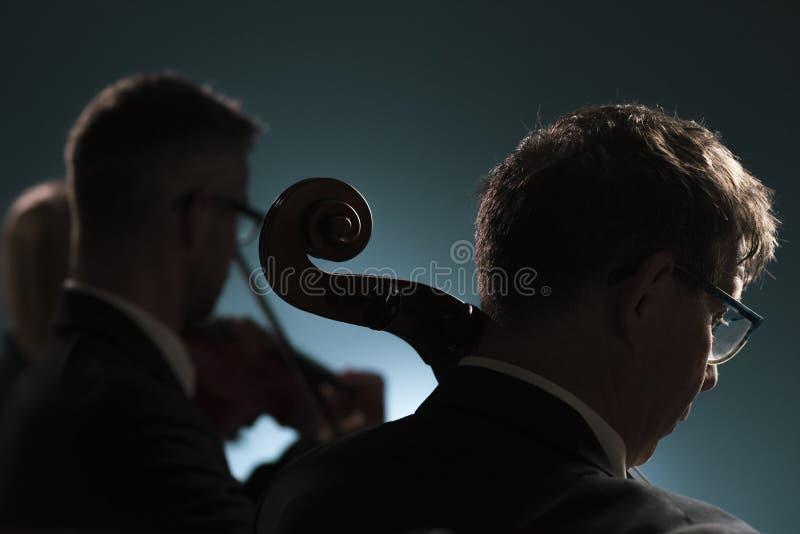 Músicos profesionales que juegan un concierto de la música clásica fotos de archivo