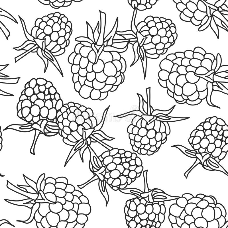 Mûre de framboise avec pettern sans couture de feuilles dessus d'isolement sur le fond blanc pour le site, blog, livre de coloria illustration de vecteur