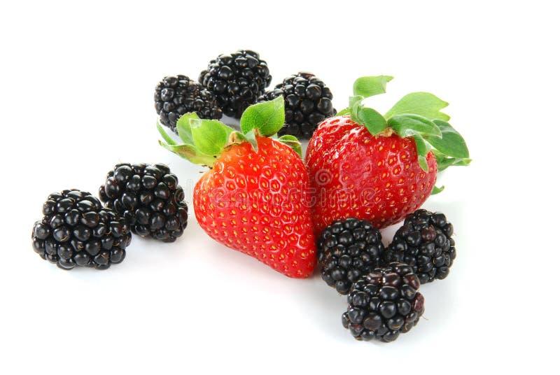 Mûres et fraises photographie stock libre de droits