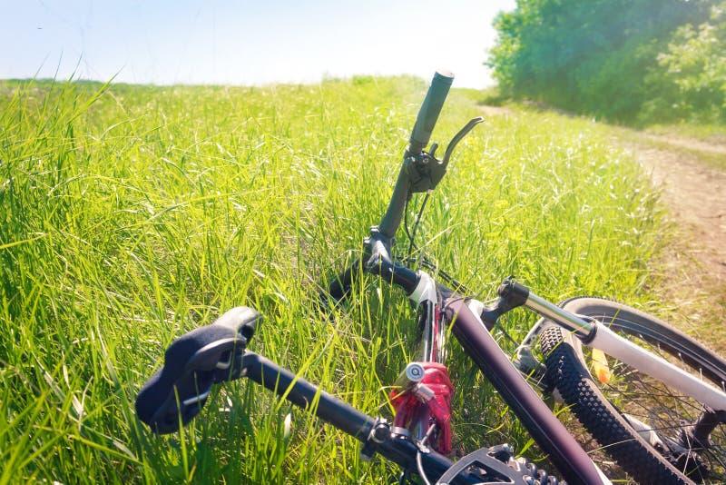 Müdes Fahrrad, das im Gras liegt stockfoto