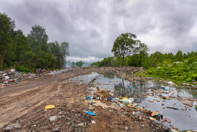 Müllgruben- oder Dumphaushaltsabfall und -abfall im Schmutzwasser, das sind, vergiftend verseuchend und Umwelt im Wald lizenzfreies stockfoto