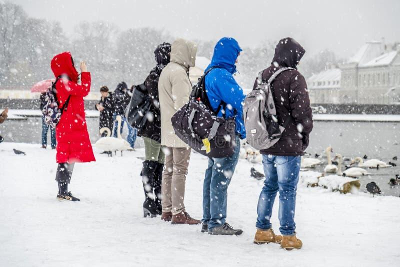 München, Duitsland - Februari 17 2018: Dame met rode laag die beelden in het sneeuwonweer nemen stock afbeeldingen