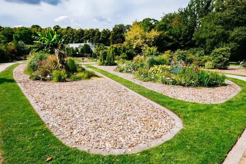MÜNSTER/ALLEMAGNE - Août 2019 : Jardin botanique dans le centre-ville de Münster près de l'Université de la WWU photographie stock libre de droits