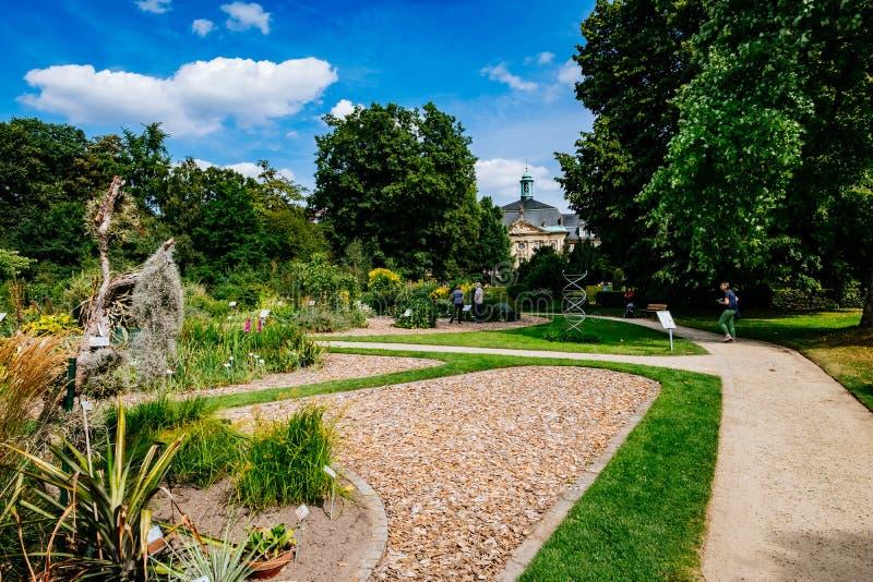 MÜNSTER/ALLEMAGNE - Août 2019 : Jardin botanique dans le centre-ville de Münster près de l'Université de la WWU photographie stock