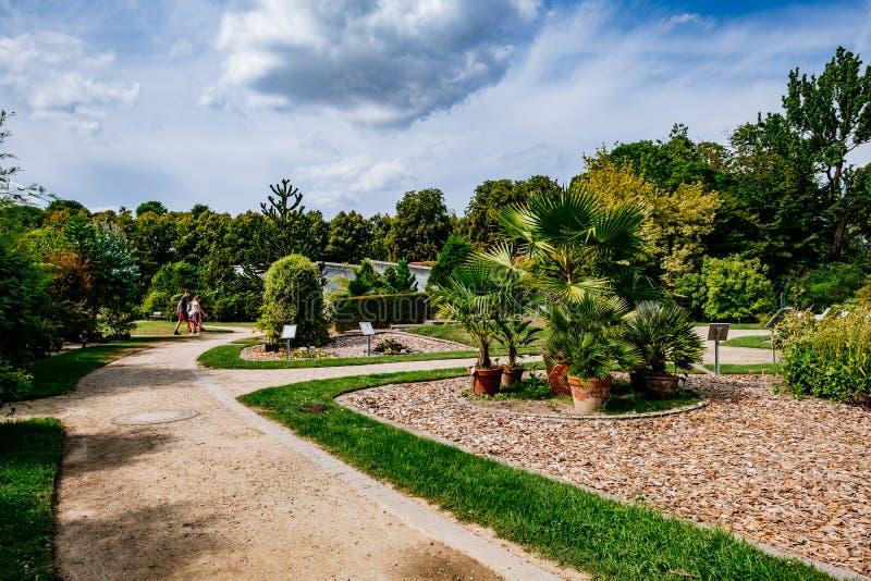 MÜNSTER/ALLEMAGNE - Août 2019 : Jardin botanique dans le centre-ville de Münster près de l'Université de la WWU image stock