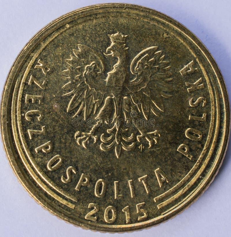 Münze 1 Grosz-Rückseite stockbild