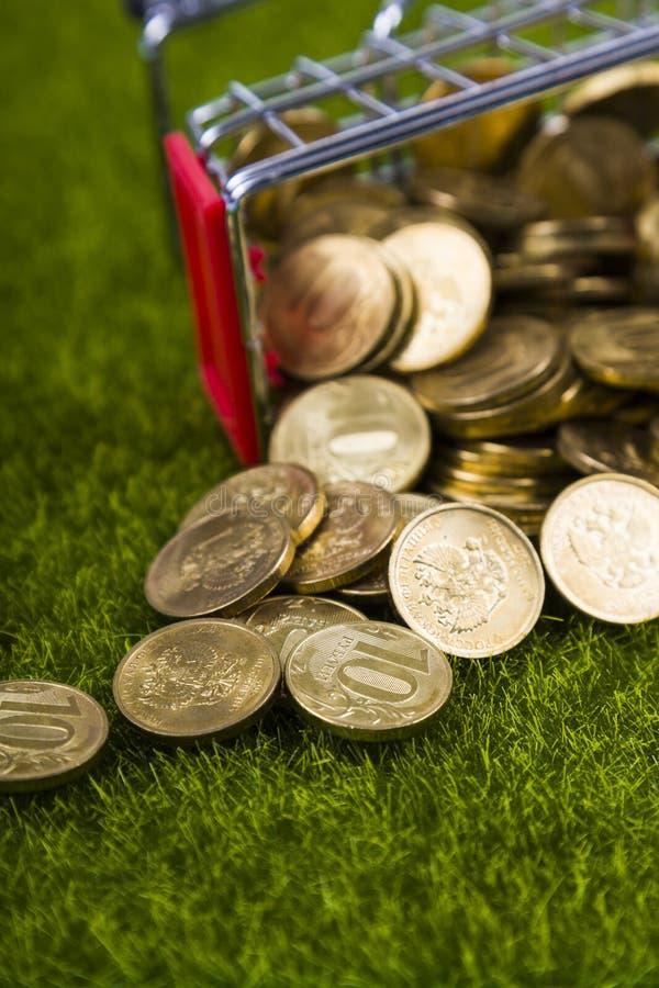Münzen heraus gegossen auf den Rasen lizenzfreies stockbild
