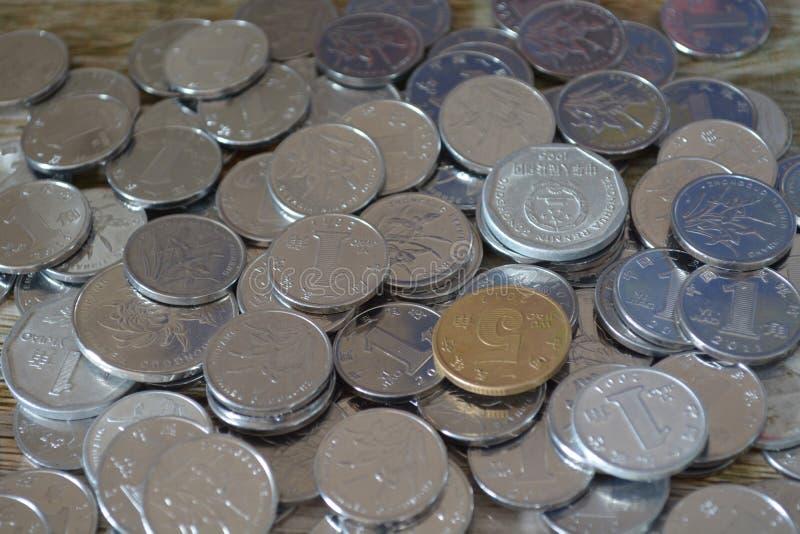 Münzen von China Pfingstrosenblume dargestellt in der chinesischen Yuan-Münze stockfotografie