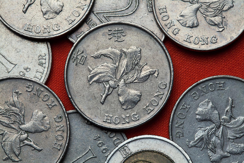 Münzen von Hong Kong stockbilder