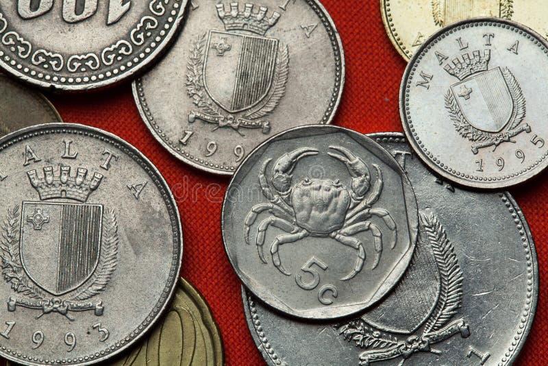 Münzen von Malta Maltesische Frischwasser- Krabbe (Fluss-lanf Potamon lizenzfreie stockfotos