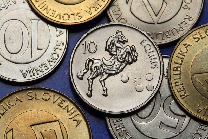 Münzen von Slowenien stockfotografie