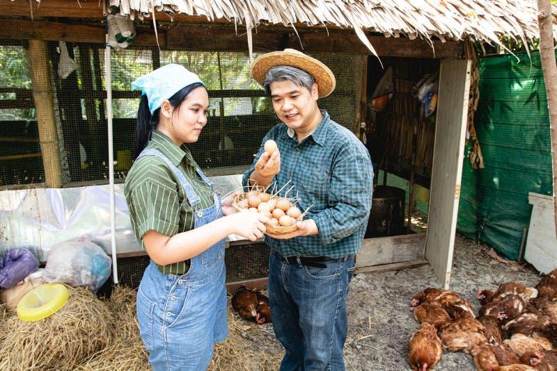Mąż i żona która posiada kurczaków jajek pomagać fotografia royalty free