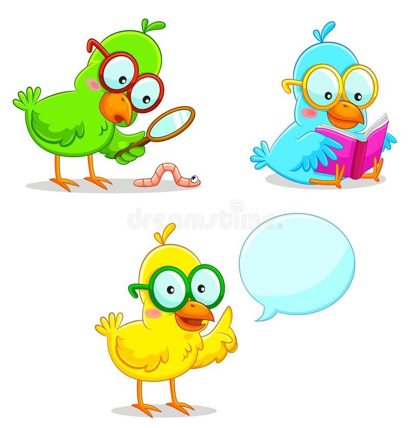 Mądrze ptaki ilustracji