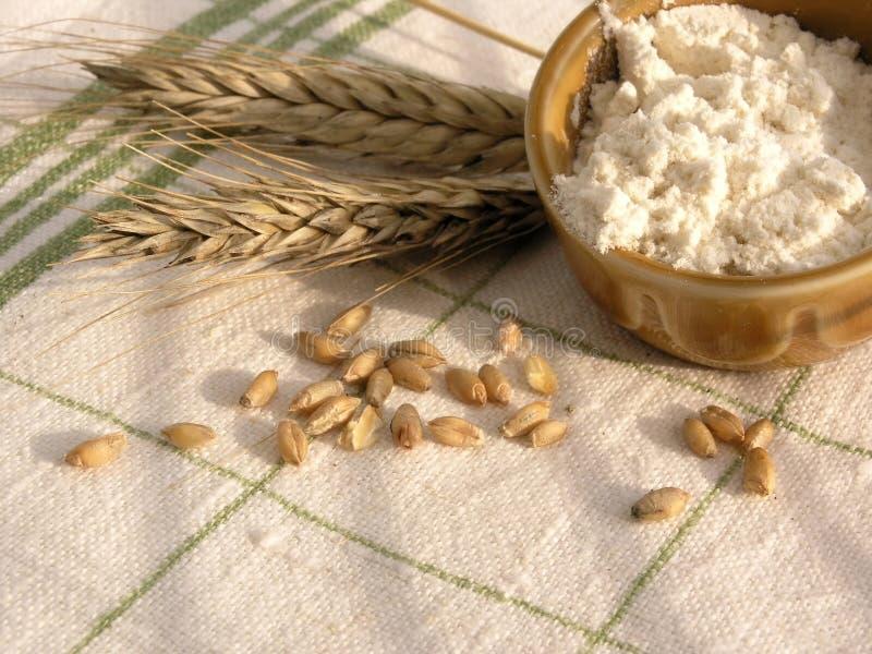 mąka obrazy stock