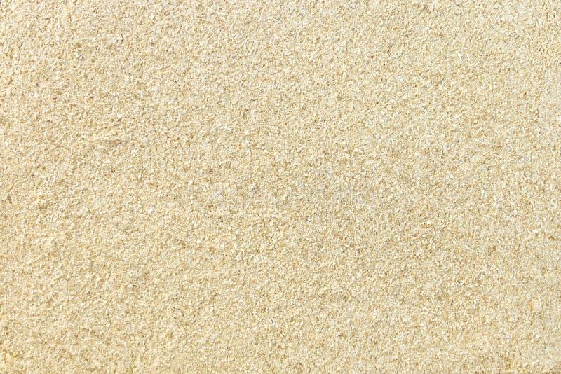 Mąka cedr lub sezam zdjęcia royalty free