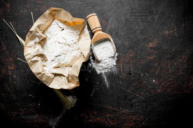 Mąka w papierze z miarką i spikelets fotografia royalty free