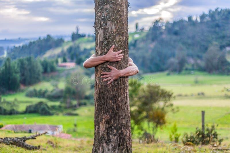 Mężczyzna ściska dużego drzewa zdjęcia royalty free